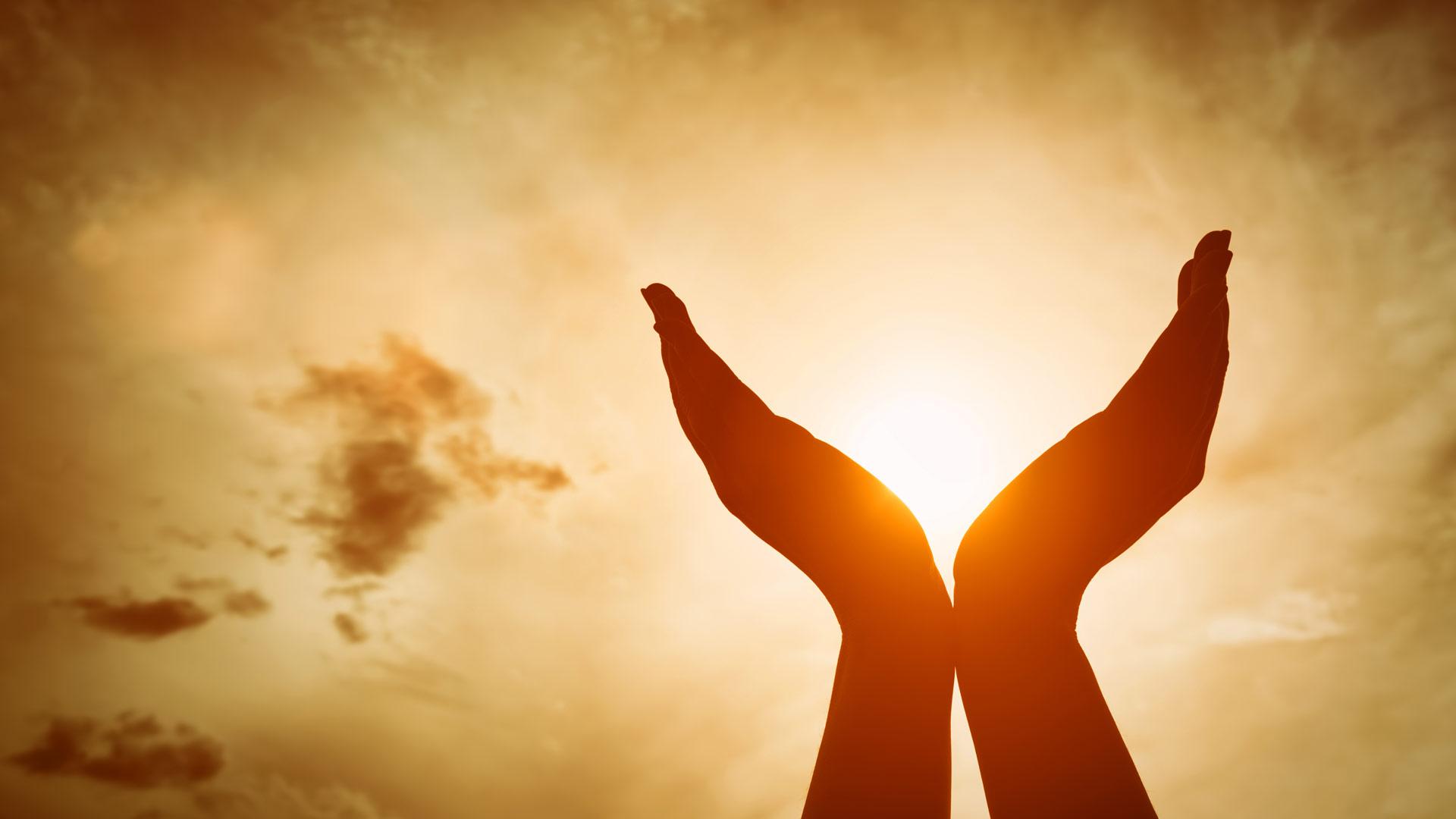 Green-Living-Family-Retreat-Yoga-Hands